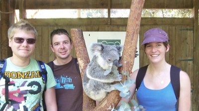 Having a Koality time at Blackbutt Reserve (that pun is for you tin)