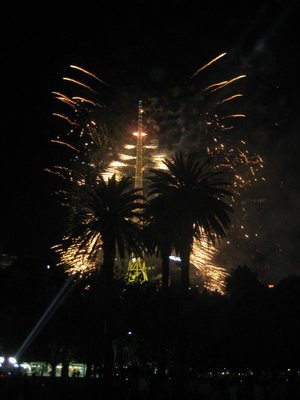 Fireworks at New Year (the tower which got set on fire)