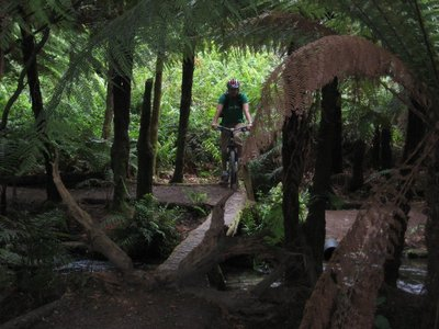 Nathan Cycling Across a Log (Pressure not to fall in the river)