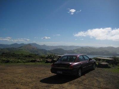 Ron Enjoying The View At Otago Peninsula