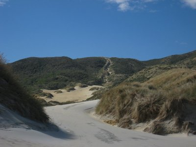 Uphill Mission (All Sand) To Get Back To The Car