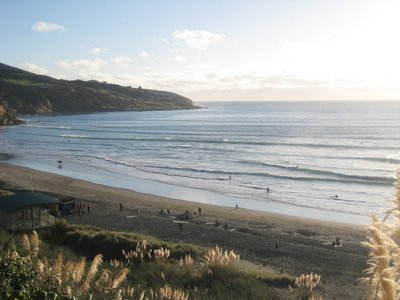 Surf Beach In Raglan