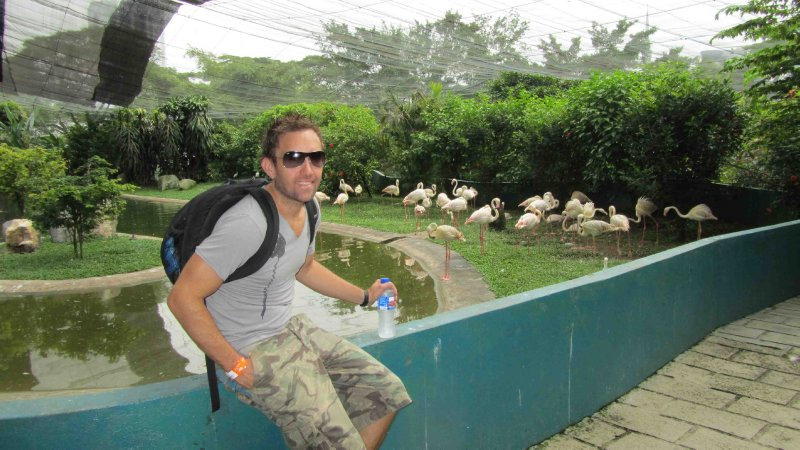 large_Lach_and_Flamingos.jpg