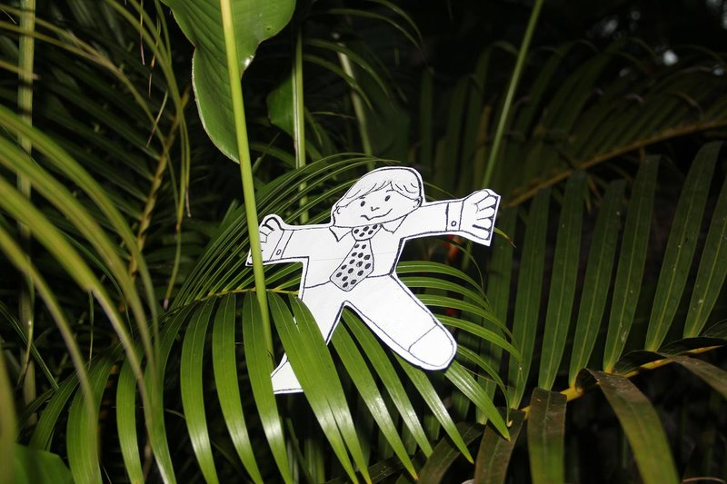 flat stanley in the jungle of costa rica