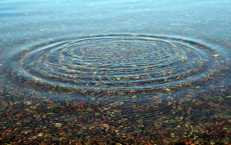 Crystal Clear Circles