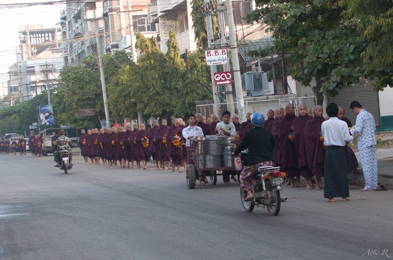 Local monks on their morning walk to collect food