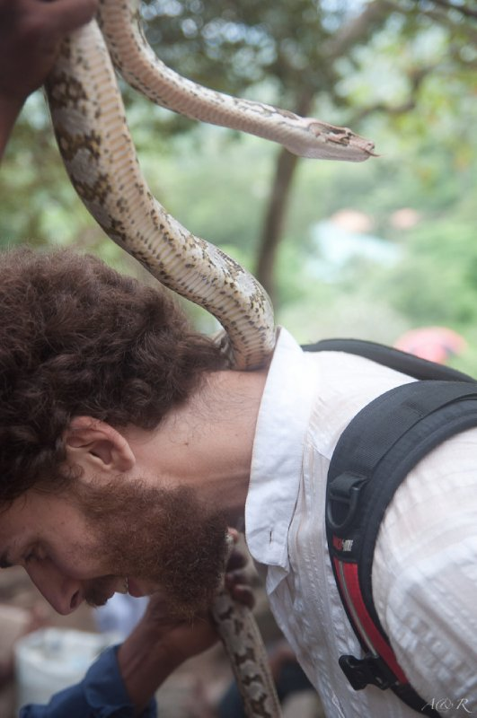 Adam being subjected to snake holding, again!