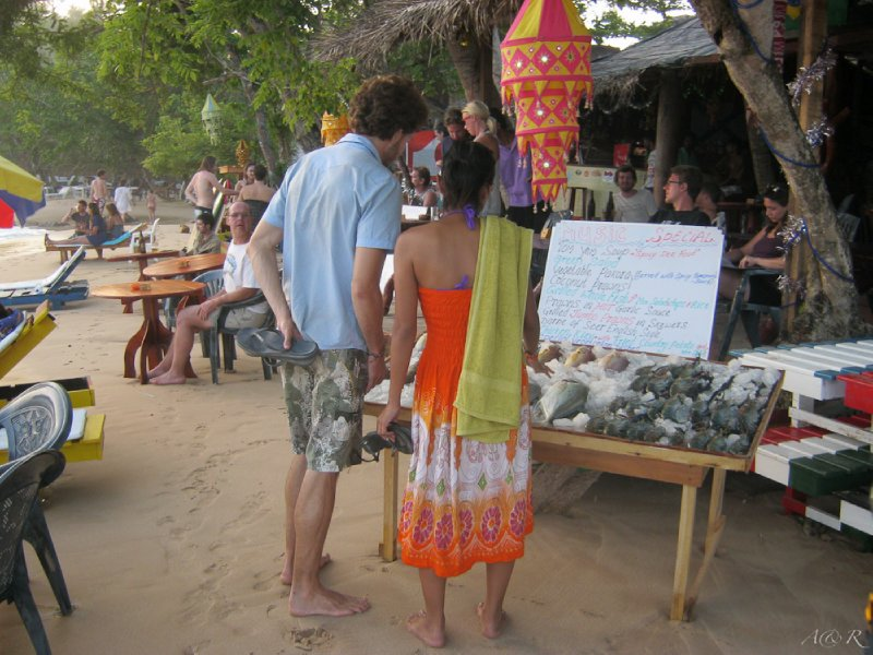 Selecting our dinner at Mirissa Beach – this is the life!
