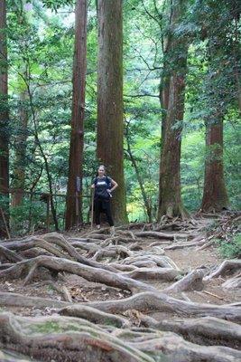 Mel_hike_roots.jpg