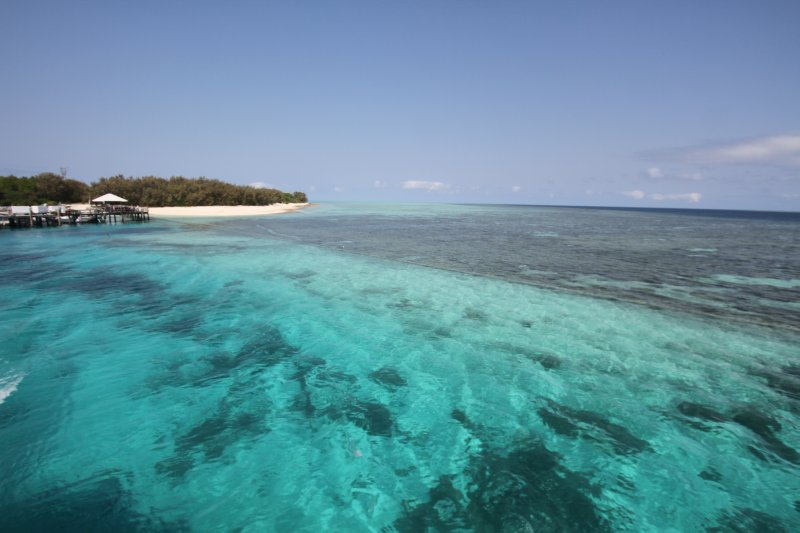 Heron Island crystal clear water
