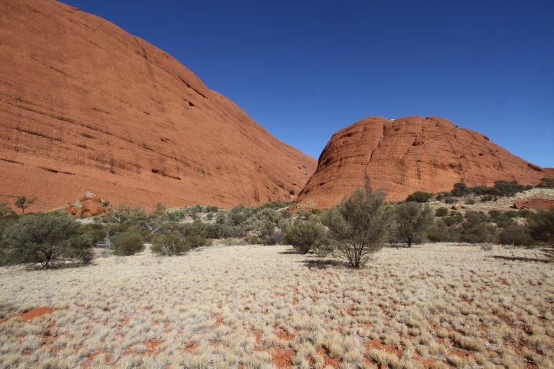 Kata Tjuta with Spinifex grass