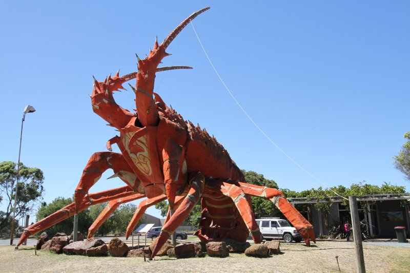 Kingston Big Lobster