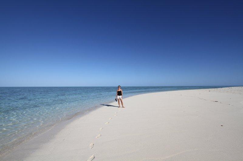 Pristine beaches on Heron Island