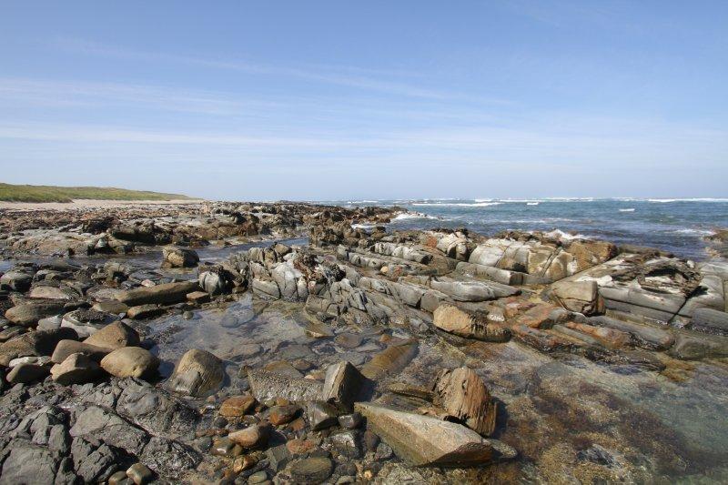 Rugged west coast of Tasmania