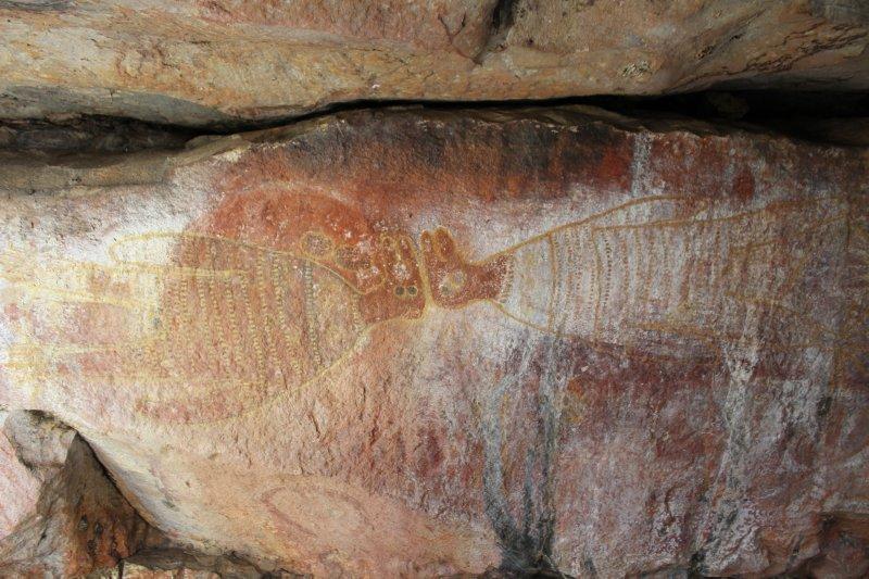 Wandjina painting near King Edward River