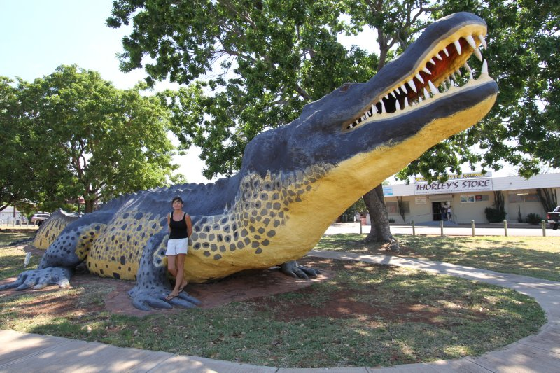 Wyndham Crocodile