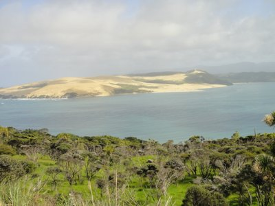 Sanddünen auf dem Weg nach Auckland