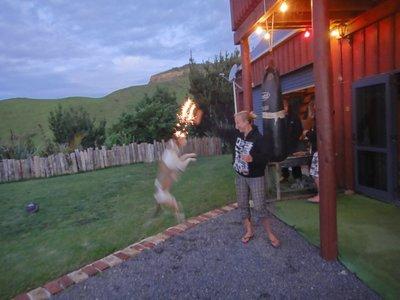 Chase in action... wohl der einzige Hund der Feuerwerk liiiiiebt <img class='img' src='http://www.travellerspoint.com/Emoticons/icon_smile.gif' width='15' height='15' alt=':)' title='' />