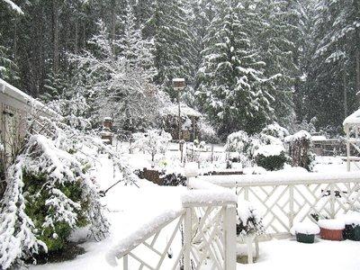 snowstorm10.jpg
