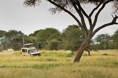 Agata on safari with Calabash 1
