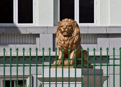 Lions from Sans Soucie