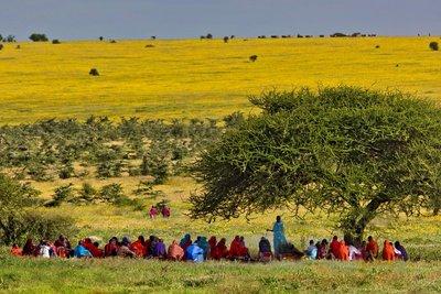 Maasai Village Elders' Weekly Meeting 12-3