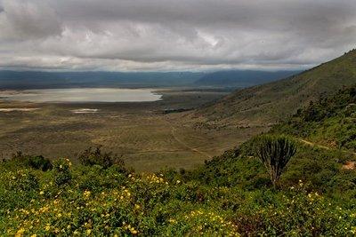 Ngorongoro Crater 12-2