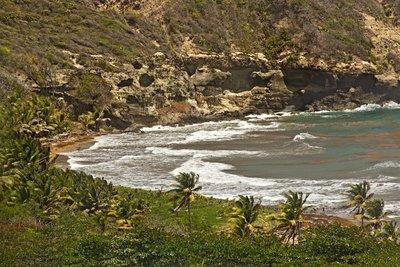 Rugged Coastline 2
