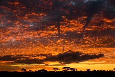 Sunrise 17th May # 11
