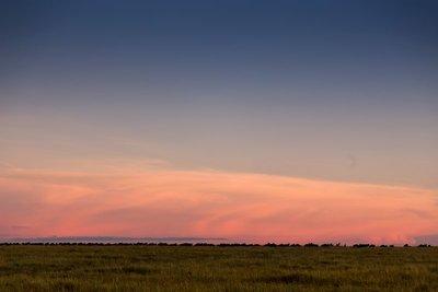 Sunrise over Serengeti 10-1