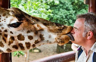 The Giraffe Centre 23