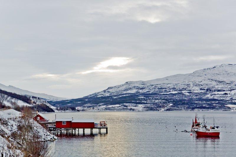 large_Alta_to_Troms__18.jpg