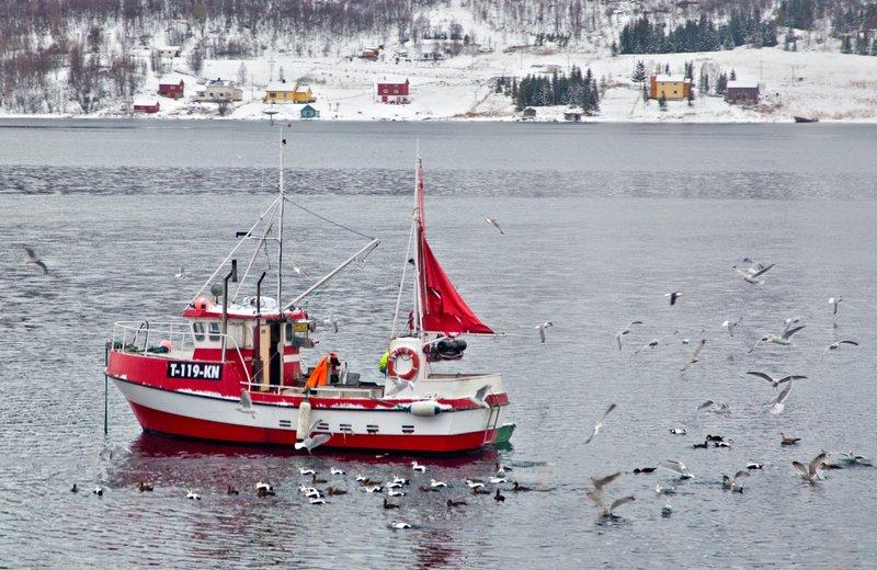 large_Alta_to_Troms__19.jpg