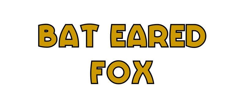 large_Bat_Eared_Fox.jpg