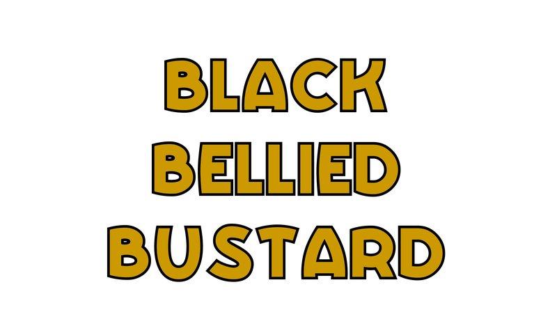 large_Black_Bellied_Bustard.jpg