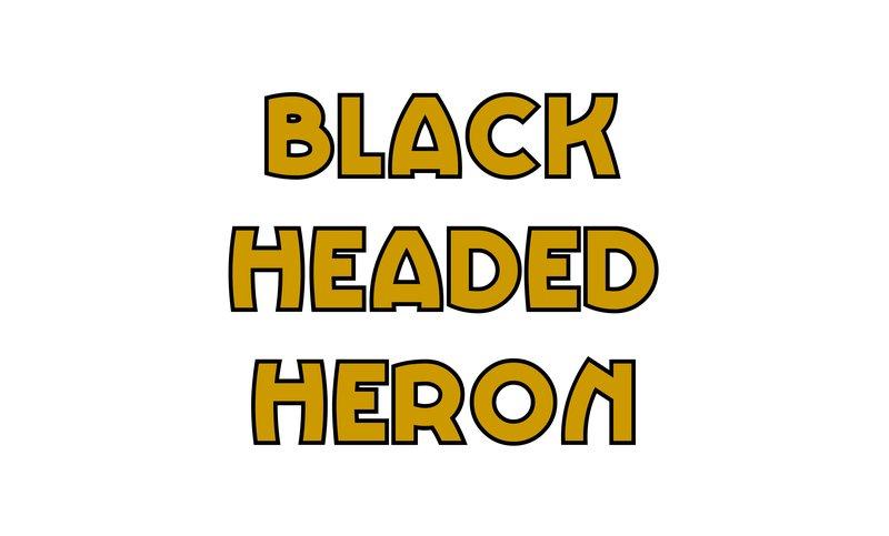 large_Black_Headed_Heron.jpg