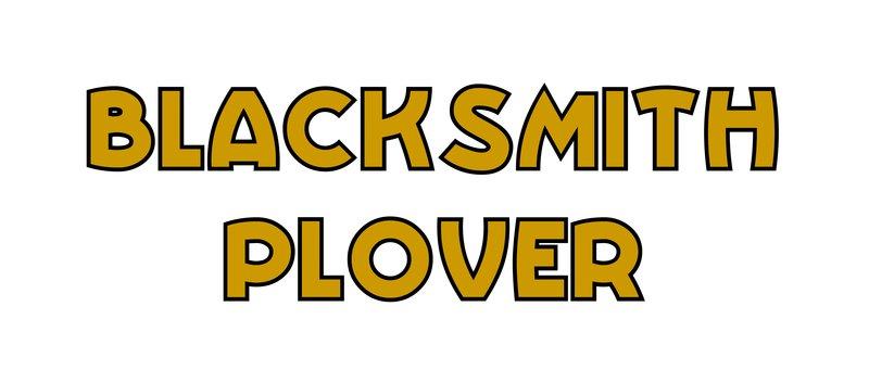 large_Blacksmith_Plover.jpg