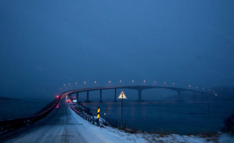 large_Bridge_to_Sommar_y_1.jpg