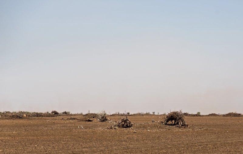 large_Chalbi_Desert_118.jpg