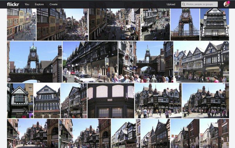 large_Chester.jpg