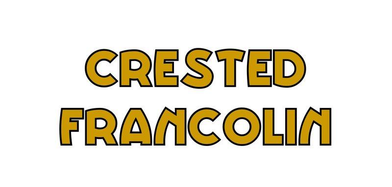 large_Crested_Francolin.jpg