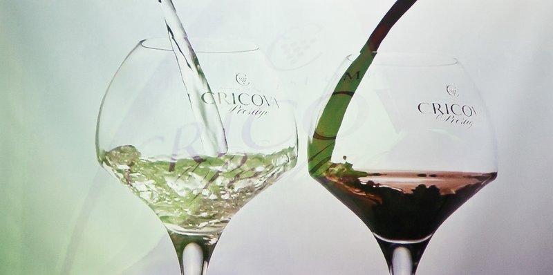 large_Cricova_Winery_7.jpg