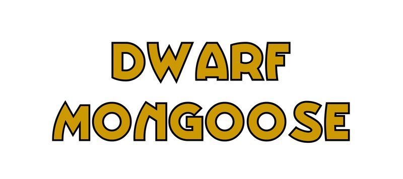 large_Dwarf_Mongoose.jpg
