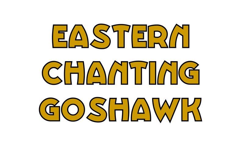 large_Eastern_Chanting_Goshawk.jpg