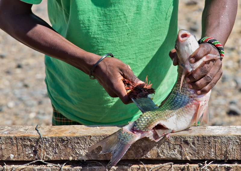 large_El_Molo_Village_-_Fish_19.jpg