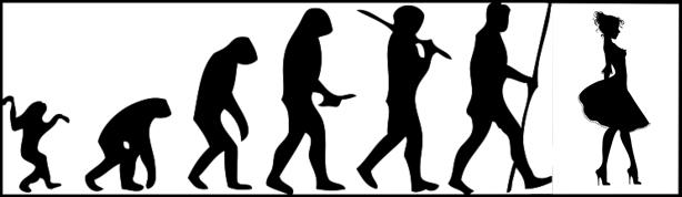 large_Evolution.jpg