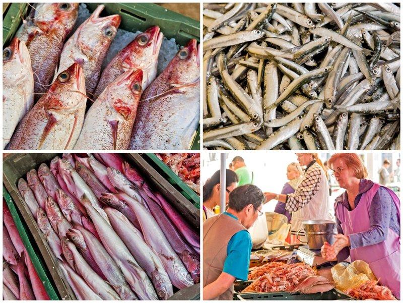 large_Fish_Market_Combo_3.jpg