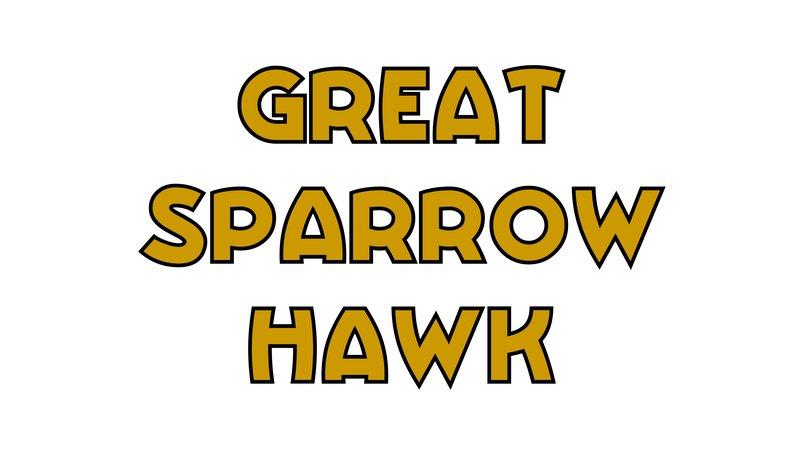 large_Great_Sparrowhawk.jpg