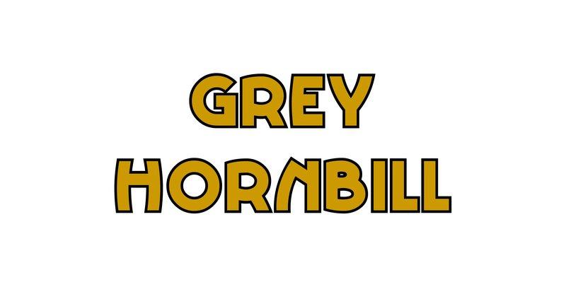 large_Grey_Hornbill.jpg