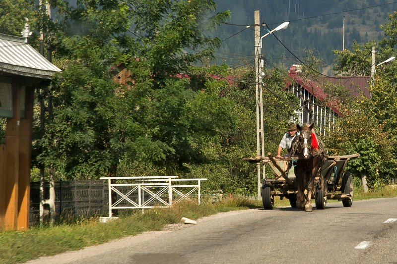 large_Horse_Drawn_Cart_3.jpg